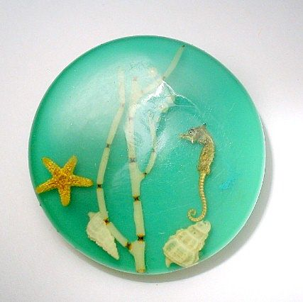 Vintage Lucite Brooch with Seahorse Coral Seashells
