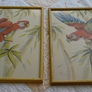 2 Beautiful Art Signed Water Colors Parrots