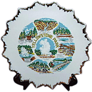 SALE Yellowstone Park Souvenir Plate ~ Japan