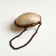Antique Shell Childs Change Purse with Original Brass Chain Handle
