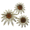 Sarah Coventry Starburst Flower Pin & Earrings Set