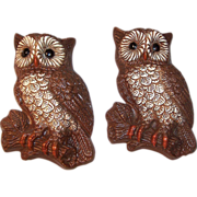 Set of 2: Vintage Owl Plaques