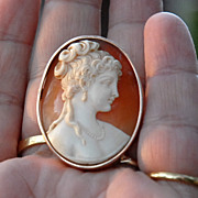 Early 20th Century  Gold Shell Cameo Brooch