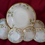 Royal Rudolstadt Prussia Thuringia Germany Hand Painted 7 Piece Dessert Berry Set