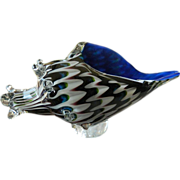 Fabulous-glass Conch shell