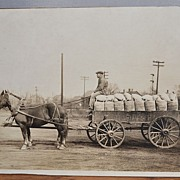 Photo - Young Man on Wagon with Horses