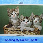 REDUCED Vintage Curteichcolor Three Of A Kind Kitten Postcard Circa 1950s