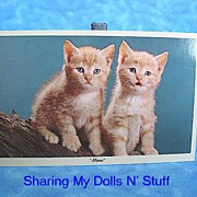 REDUCED Vintage Curteichcolor Kitten Postcard Circa 1950s