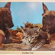 "REDUCED Vintage ""Doubtful Pals"" Curteichcolor Postcard Circa 1960s"