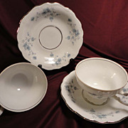 Johann Haviland &quot;Blue Garland&quot; Footed Cup/Saucer w/Bavarian Backstamp (5 sets of 2 a