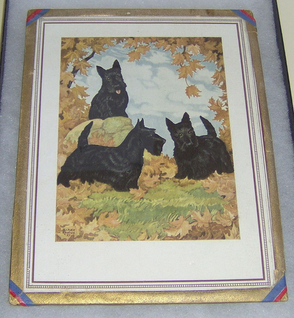Three Scotty Dogs in Fall Leaves print by Barrie Rennie 37