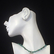 Turquoise and Snake Dog Tag Silver Necklace