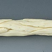 Antique European Ivory Handle Carved with Cat Tails