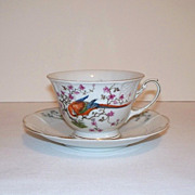 SALE Phillip Rosenthal Parrot Tea Cup and Saucer