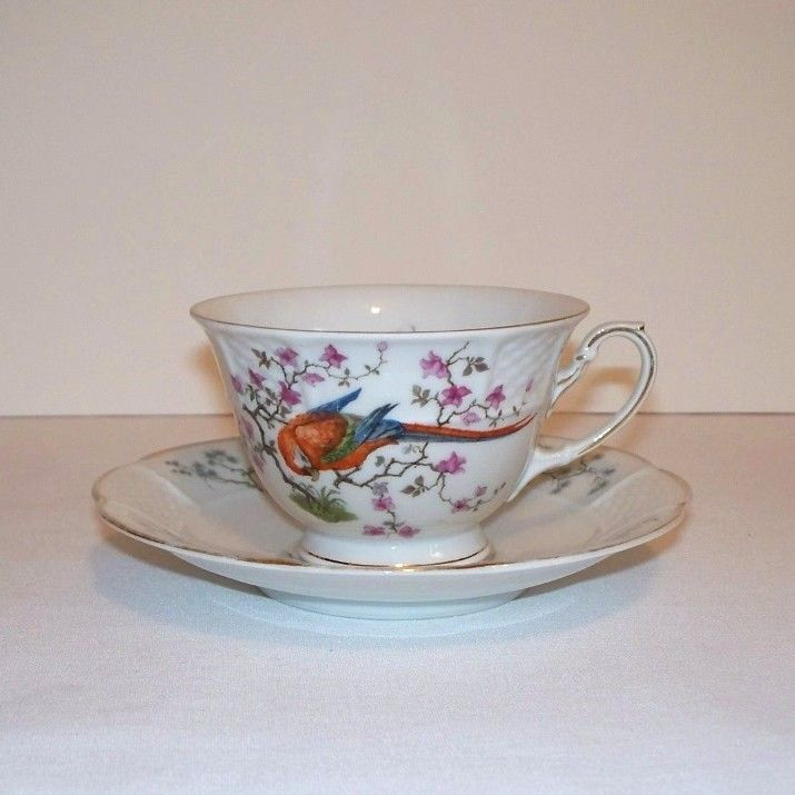 Phillip Rosenthal Parrot Tea Cup and Saucer