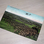 SALE Inspection and Review Military Postcard US Cavalry Soldiers Marching and on Horseback, Ol