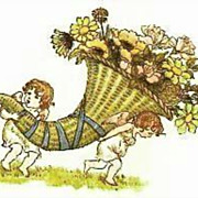 Kate Greenaway's 'Language Of Flowers' DJ, Illustrations -  Art, Nature, Garden, Hardcover, ..