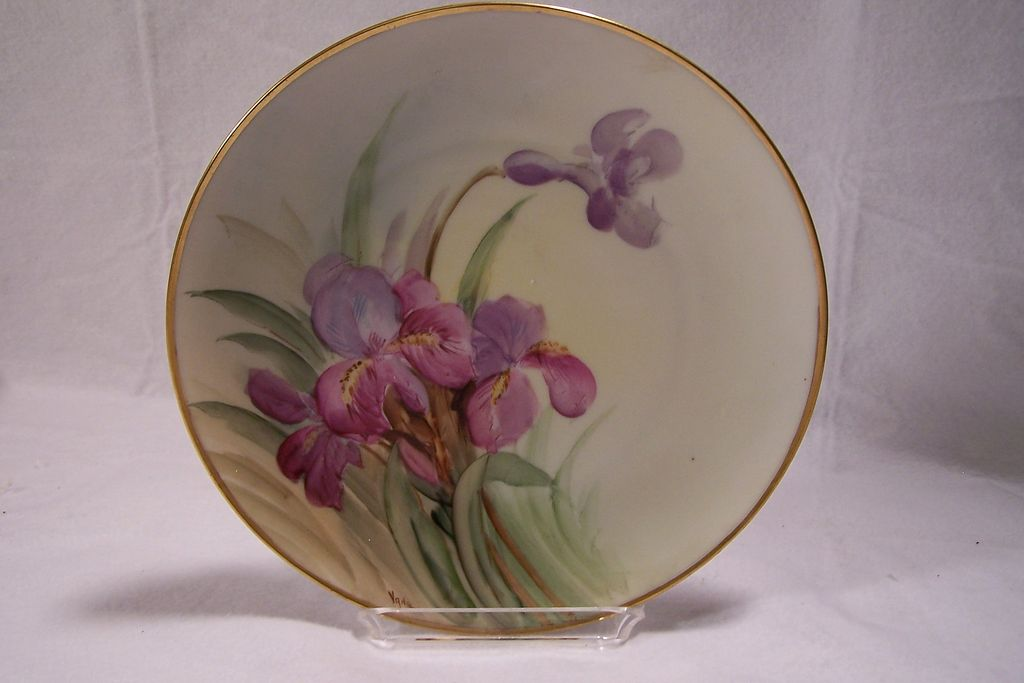 Antique Hand painted Porcelain Plate 'Naturalistic Irises' Signed by the Professional White's Art Co Artist 'Vane'