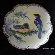 Antique porcelain tapestry plate bluejay bluebird & chick artist signed