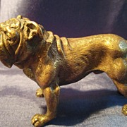 SOLD Incredibly Cast Solid Bronze Bull Dog Early 1900's