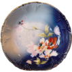 Beautiful Bavarian  Bowl hand Painted with White and Orange Poppies ~ Royal Bavaria China 1890-1930