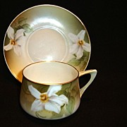 SALE Nice German Porcelain Demitasse Cup and Saucer with White Daffodil ~ REINHOLD SCHLEGELMIL