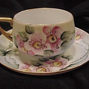 SALE Dainty ~German Porcelain Cup & Saucer ~ Hand Painted with Wild Pink Roses ~ KPM  Krister