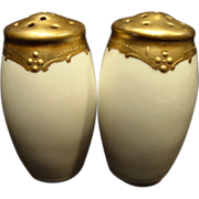 SALE Wonderful Salt and Pepper Set by Pickard ~ Gold on White ~ Pickard Studios 1895-1898
