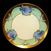 SALE Amazing Limoges Porcelain Plate ~ Hand Painted with Blue Flowers ~ White�s Art Company De