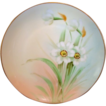 Gorgeous Porcelain Cabinet Plate by PICKARD Studios ~signed by Curtis Marker. Pheasant's Eye Daffodils / Narcissus � Hand Painted- Pickard Studios Chicago IL 1912-1918