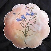 SALE Outstanding Rosenthal Cabinet Plate Hand Painted with Blue Wispy flowers on a Peach Backg