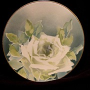 SALE Illuminating French Majolica Cabinet Plate with a White Rose ~ KELLER & GUERIN - ERNEST B