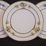 SALE Three Gorgeous Bavarian Porcelain Plates Hand Painted with Three Different Types of Grape