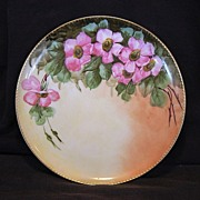SALE Beautiful Limoges Porcelain Cabinet Plate ~ Hand Painted with Wild Pink Roses ~ Haviland