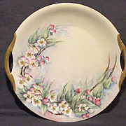 SALE Gorgeous Bavarian Porcelain Cake Plate ~ Hand Painted with Pink Apple Blossoms ~ Bavaria