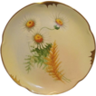 Gorgeous Bavarian Porcelain Plate ~ Pickard Studio with Yellow Centered White Daisies ~ Artist Signed  Wight  ~ Jaegers & Co Bavaria / Pickard Studios Chicago IL 1906 - 1910