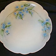SALE Exceptional Bavarian Porcelain Cabinet Plate ~ Hand Painted with Blue Flowers ~ Artist �L
