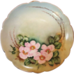 Exceptional Bavarian Porcelain Cabinet Plate ~ Hand Painted with Wild Pink Roses ~ Artist  Lebovitz Signed ~ Bavaria 1910
