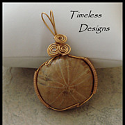 Large Sand Dollar Fossil Pendant Wire Wrapped Bronze