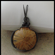 Large Hand Wire Wrapped Sand Dollar Fossil Pendant
