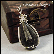 REDUCED Nice Orthoceras Fossil Pendant Hand Wire Wrapped