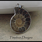 SOLD Polished Half Ammonite Fossil Pendant