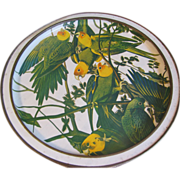 Really Large Sunshine Biscuit Tin, Audubon Birds