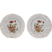 Lovely Pair of Botanical Reticulated Plates, Poppies
