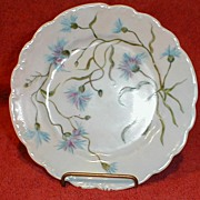 Lovely Hand Painted Plate, Blue Carnations