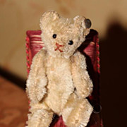 SOLD Early 1910 Steiff White Mini Teddy Bear w FF button in ear & chair