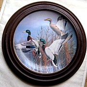 "Danbury Mint ""Hazy Ascent"" Limited Edition Ducks Plate - 1988"