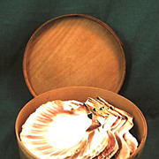 SALE Antique Shaker Box w/ Vintage Scallop Shells, circa early 20th century