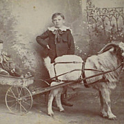 Victorian Cabinet Card with Child in Goat Pulled Metal Wagon