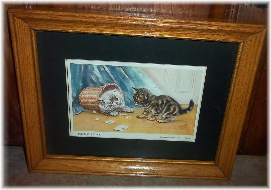 Charming framed printed kitty cat kitten postcard for L furniture warehouse victoria bc